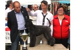 APoP-Dieppe-july-16-class-puppy-BEST-IN-SHOW-PUPPY-with-Mrs-Makomaski-400-275