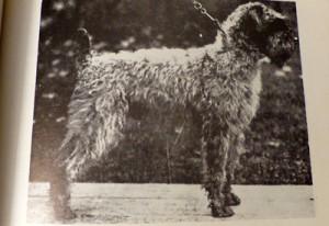 Champion-USMA-O'ROM-1922-400-1