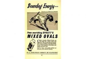 bounding-energy-400-1
