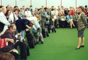 overseas-1991-dortmund-meg-400-1